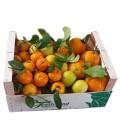 DELUXE Citrus Mix Kasse (8 kg)