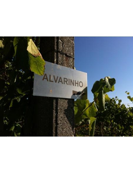 Areal Alvarinho 2016
