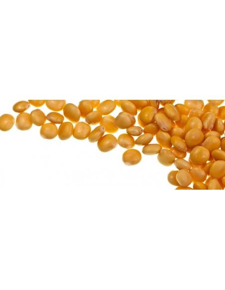 Lupin bønner i olielage, med chili og hvidløg