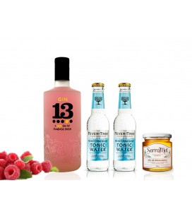 Kit - Gin 13 Raspberry