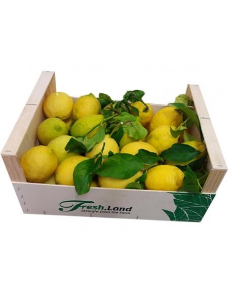 DELUXE Citroner (4 kg)