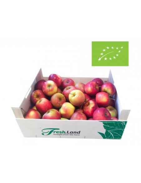 """Økologiske røde """"Story"""" æbler (6kg)"""