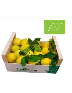 Økologiske, saftige Verna Citroner (6kg)